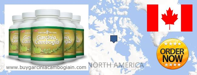 Best weight loss pills for hypothyroidism photo 7