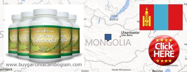 Where to Buy Garcinia Cambogia Extract online Mongolia