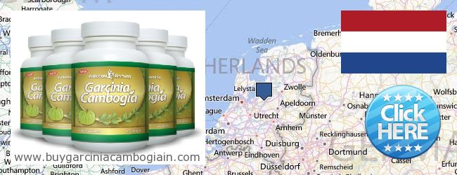 Where to Buy Garcinia Cambogia Extract online Netherlands